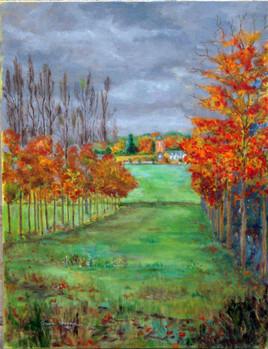 Rivière, automne à Bretencourt.