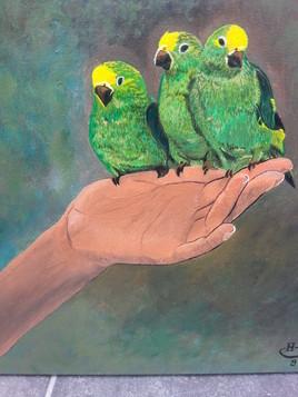 tableau peinture animaux oiseaux