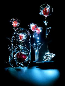 Roses éternelles rouges