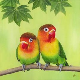 Peinture acrylique : oiseaux Inséparables