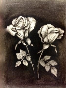 Roses au fusain