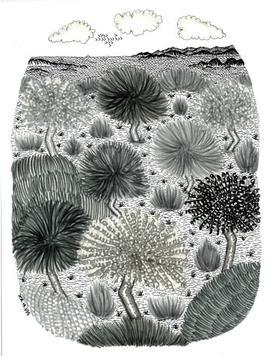 Piantarella, dessins de JCh - JCh.18.395