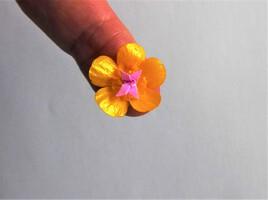 bijou de doigt en origami