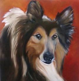 Eternelle Lassie !