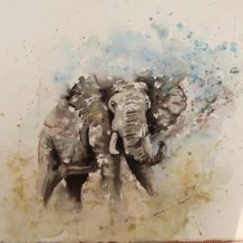 L' ELEPHANT...