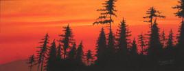 Crépuscule sur la forêts...