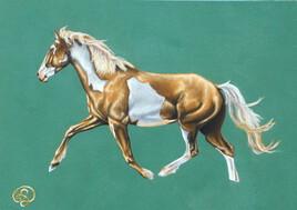 Mustang Météor