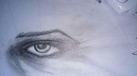 essai sur l'oeil