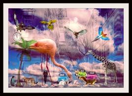 Paris dream
