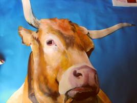 buste de vache