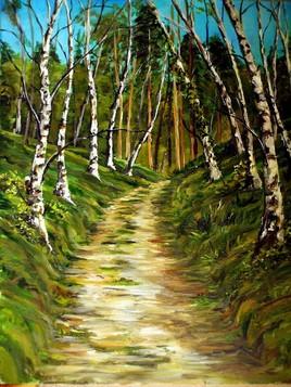 Chemin de bouleaux au parc nord des Ulis