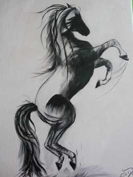 cheval de marie laurence