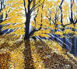Sous bois en automne...