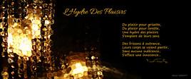 """Poème """"L'Hydre Des Plaisirs"""" Album """"INSIGHT"""""""