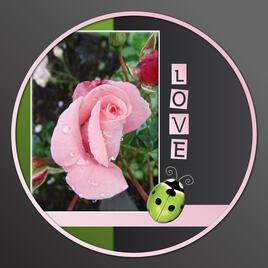 107-TOUT SIMPLEMENT ENSEMBLE LOVE