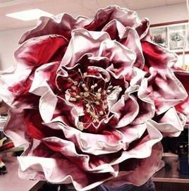 Rose Roger Lambelin, Floralie de Pau