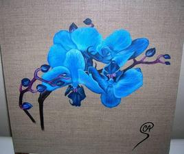 Fleurs à l'acrylique - Orchidées bleues