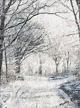 Route forestière sous la neige