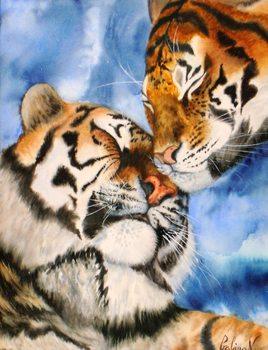 Tiger on blue