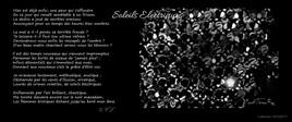 """Poème : """"Soleils Electriques"""" Collection """"SOCIETY"""""""