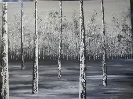 forêt noir et blanc