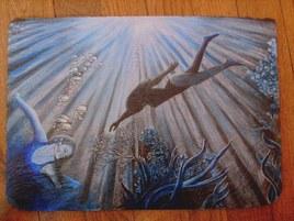 Plongée en mer turquoise