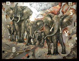 Famille en danger - Elephants