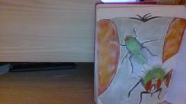 Les mouches à trois mesures
