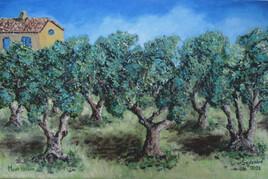 La maison aux oliviers