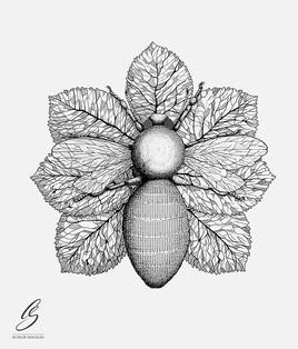 """""""L'abeille"""""""