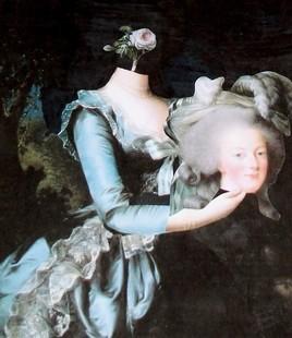 Le portrait de la rose