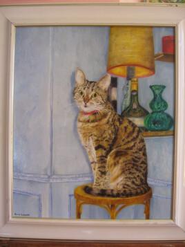 Portrait d'une Minette