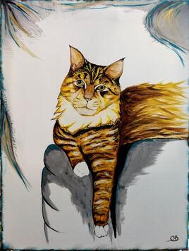 Le chat pépère