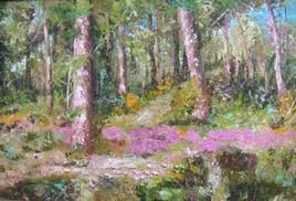 forêt de septembre