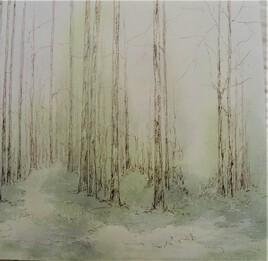 Forêt 17