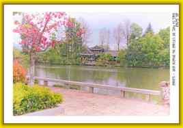 Dans le parc de l'Etang du Dragon Noir à Lijiang