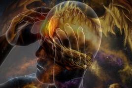 Cerveau M