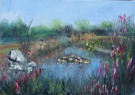 l'étang de St Jacut