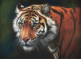 Mercurius, le Tigre à l'affût