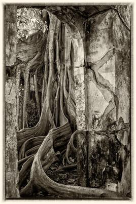 La prison emprisonnée 3 (Petit Canal - Guadeloupe) tirage dibond® 40 x 60 cm