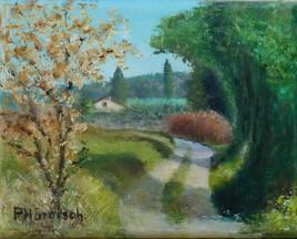 Chemin de Clairefontaine