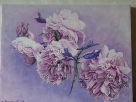 roses a fleurs de pivoines