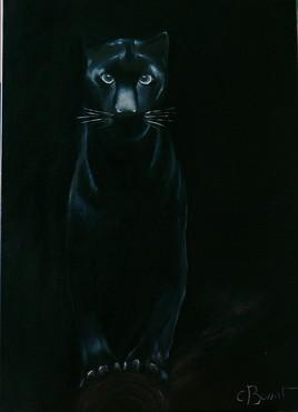 la panthere