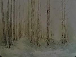 Forêt 10