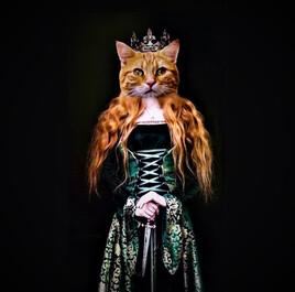 La Reine des Chats