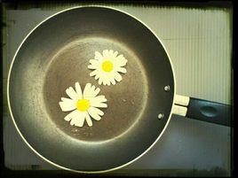 oeufs fleurettes