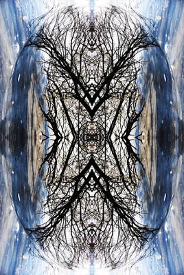 Inclusion bleue