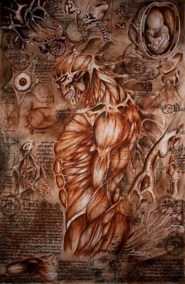 """Etudes """"Anato-mystiques"""""""