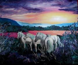 paysage et chevaux