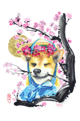 """Spring Chiba"""